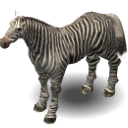 0_1473066958989_Zebra.png